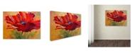 "Trademark Global Marion Rose 'Red Poppy II' Canvas Art - 14"" x 19"""