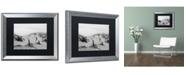 "Trademark Global PIPA Fine Art 'Buried Fences' Matted Framed Art - 16"" x 20"""