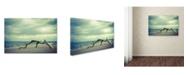 "Trademark Global PIPA Fine Art 'The Cove' Canvas Art - 16"" x 24"""