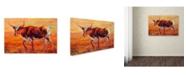 "Trademark Global Marion Rose 'Longhorn Heifer' Canvas Art - 16"" x 24"""