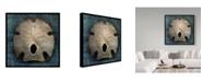 "Trademark Global John W. Golden 'Arrowhead Sand Dollar' Canvas Art - 18"" x 18"""