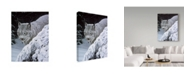 "Trademark Global Ron Parker 'Behind The Hemlock Lynx' Canvas Art - 18"" x 24"""