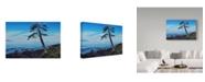 "Trademark Global Ron Parker 'Pacific Shore' Canvas Art - 16"" x 24"""