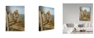 "Trademark Global Rusty Frentner 'Red Tailed Hawk' Canvas Art - 18"" x 24"""