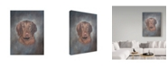 "Trademark Global Rusty Frentner 'Visual' Canvas Art - 18"" x 24"""