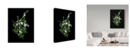 "Trademark Global Susan S. Barmon 'Stock And Mint' Canvas Art - 18"" x 24"""