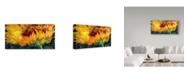 "Trademark Global Marcia Baldwin 'Sunflower Rise'N Shine' Canvas Art - 19"" x 10"""