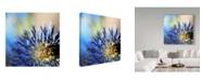 "Trademark Global Incredi 'Imagine' Canvas Art - 14"" x 14"""
