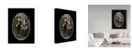 "Trademark Global J Hovenstine Studios 'Border Collies' Canvas Art - 18"" x 24"""