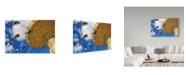 "Trademark Global Incredi 'Swings' Canvas Art - 19"" x 12"""