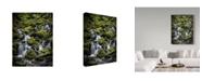 "Trademark Global J.D. Mcfarlan 'Olympic Np 9' Canvas Art - 14"" x 19"""