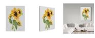 "Trademark Global Jean Plout 'Botanicals 10' Canvas Art - 14"" x 19"""