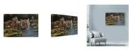 "Trademark Global Michael Jackson 'Dorothys Tiggers' Canvas Art - 24"" x 16"""