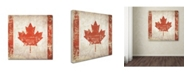 """Trademark Global Stephanie Marrott 'Canada Flag' Canvas Art - 24"""" x 24"""""""