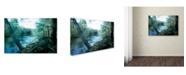 "Trademark Global Mark Ashkenazi 'Img 0401' Canvas Art - 30"" x 47"""