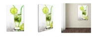 "Trademark Global The Macneil Studio 'Green Cocktail' Canvas Art - 30"" x 47"""