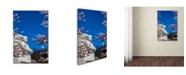 "Trademark Global Mitch Catanzaro 'MLK Memorial II' Canvas Art - 30"" x 47"""