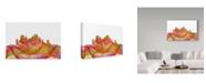 "Trademark Global Marlene Watson 'Pittsburgh Pennsylvania Swirl' Canvas Art - 30"" x 47"""