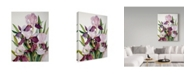 "Trademark Global Joanne Porter 'Pink Maroon Iris' Canvas Art - 35"" x 47"""