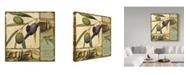"Trademark Global Lisa Audit 'Tuscan Delight II' Canvas Art - 35"" x 35"""