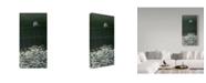 "Trademark Global Ron Parker 'House Sparrow Daises' Canvas Art - 24"" x 47"""