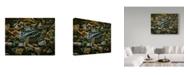 "Trademark Global Wilhelm Goebel 'Sitting Tight' Canvas Art - 24"" x 32"""