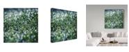 """Trademark Global Incredi 'Hide And Seek' Canvas Art - 35"""" x 35"""""""