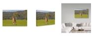 "Trademark Global Incredi 'Kangaroo Look' Canvas Art - 32"" x 22"""