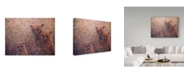 "Trademark Global James W. Johnson '3 Bears' Canvas Art - 47"" x 35"""