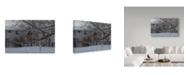 "Trademark Global Ian Tornquist 'Frozen Trees' Canvas Art - 32"" x 22"""