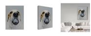 """Trademark Global James Ruby 'Titleist 2' Canvas Art - 35"""" x 47"""""""