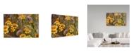 "Trademark Global Janice Sullivan 'Antelope Valley Wildflowers' Canvas Art - 32"" x 22"""