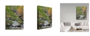 "Trademark Global J.D. Mcfarlan 'Middle Prong' Canvas Art - 35"" x 47"""