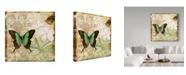 """Trademark Global Jean Plout 'Inspirational Butterflies 3' Canvas Art - 35"""" x 35"""""""