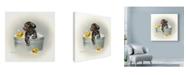 "Trademark Global Peggy Harris 'Ducks Unlimited' Canvas Art - 35"" x 35"""