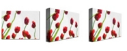 "Trademark Global Michelle Calkins 'Red Tulips from Bottom Up IV' Canvas Art - 32"" x 22"""