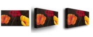 """Trademark Global Rio 'Orange Red and Yellow' Canvas Art - 47"""" x 24"""""""