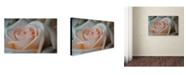 "Trademark Global Monica Fleet 'Perfezione' Canvas Art - 32"" x 22"""