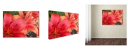 """Trademark Global Monica Fleet 'Lehua' Canvas Art - 24"""" x 18"""""""