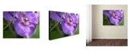 """Trademark Global Monica Fleet 'Meaningful Bliss' Canvas Art - 32"""" x 24"""""""