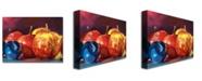 "Trademark Global David Lloyd Glover 'Ripe Plums and Apples' Canvas Art - 47"" x 35"""