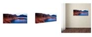"Trademark Global David Evans 'The Hazards-Freycinet' Canvas Art - 32"" x 10"""