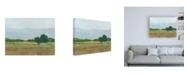 "Trademark Global Ethan Harper Viridian Shade I Canvas Art - 36.5"" x 48"""
