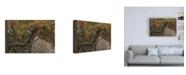 """Trademark Global Kurt Shaffer Photographs Autumn Snow Canvas Art - 27"""" x 33.5"""""""