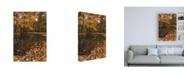 """Trademark Global Kurt Shaffer Photographs Autumn picnic flooded Canvas Art - 19.5"""" x 26"""""""