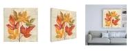 "Trademark Global Silvia Vassileva November Leaves IV Canvas Art - 15.5"" x 21"""
