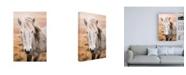 """Trademark Global Laura Marshall Heida II Canvas Art - 19.5"""" x 26"""""""