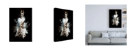 "Trademark Global Philippe Hugonnard Wild Explosion Collection - the Giraffe Canvas Art - 27"" x 33.5"""