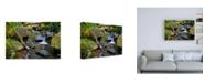 "Trademark Global Michael Broo Mossy Stream Canvas Art - 27"" x 33.5"""