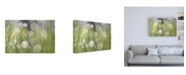 "Trademark Global Ulpi Gonzale Morning Light No. 4 Canvas Art - 15.5"" x 21"""